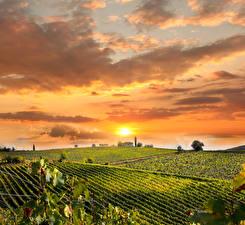 Картинки Италия Пейзаж Рассветы и закаты Поля Небо Тоскана Солнце Облака Природа