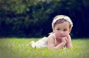 Картинки Девочки Взгляд Трава Дети