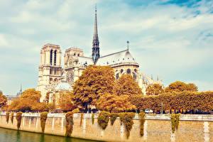 Фото Франция Осенние Париж Башня Города