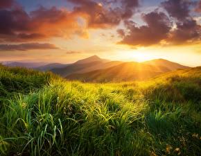 Фото Пейзаж Рассветы и закаты Гора Трава Облака Лучи света Природа
