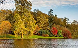 Обои Великобритания Парки Реки Осень Деревья Westonbirt Arboretum Природа фото