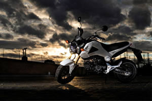 Фотография Honda - Мотоциклы Сбоку 2013-15 MSX125 Мотоциклы