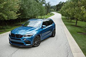 Картинка BMW Голубой Металлик 2015-16 IND X5 M автомобиль