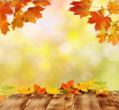 Обои Времена года Осень Листья Доски Шаблон поздравительной открытки Природа фото