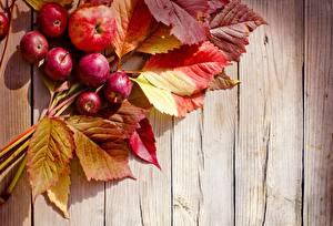 Обои Осень Яблоки Листья Доски Природа фото