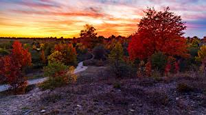 Обои Осень Рассветы и закаты Дороги Вечер Деревья Природа фото