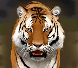 Обои Тигры Рисованные Взгляд Морда Животные фото