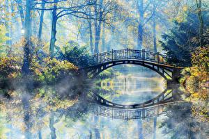 Обои Парки Реки Осень Мосты Туман Природа фото