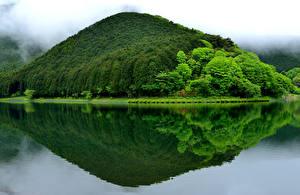 Фотография Япония Озеро Горы Леса Lake Tanuki Fujinomiya Природа