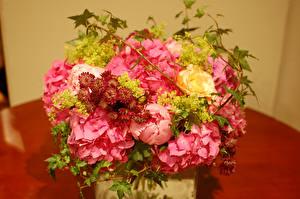 Фото Букеты Пионы Гортензия Цветы