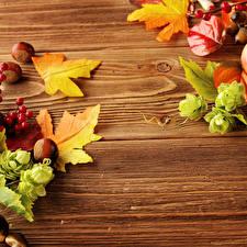 Обои Осень Орехи Листья Доски Природа фото