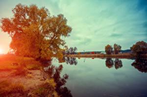 Фотография Озеро Рассвет и закат Небо Осень Деревьев Природа