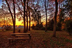 Обои Италия Осень Вечер Деревья Листья Стол Lago Di Fogliano Latina Природа фото
