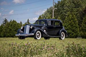 Фотография Ретро Черных Металлик Седан 1937 Packard Twelve Club Sedan Авто