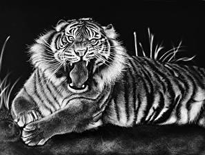 Обои Большие кошки Тигры Рисованные Оскал Животные фото