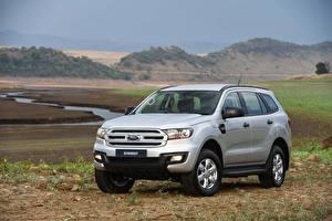 Картинка Ford Серебристый Металлик 2015-16 Everest XLS Автомобили