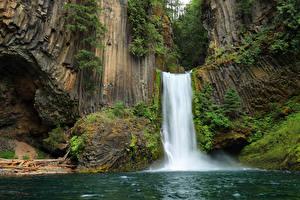 Обои США Водопады Мох Скала Toketee Falls Oregon Природа фото