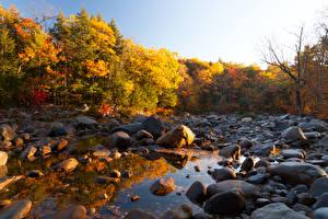 Обои Осень Камни Леса Ручей Природа фото