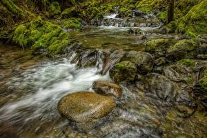 Обои Канада Парки Реки Камни Водопады Мох Koksilah River Park Природа фото