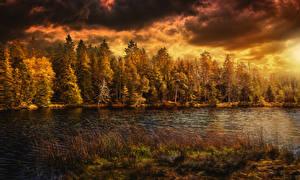 Обои Швейцария Времена года Осень Леса Реки Облака Природа фото