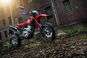 Картинки Honda - Мотоциклы 2013-16 CRF250M Мотоциклы