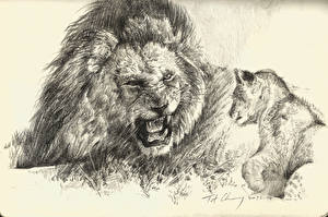 Обои Большие кошки Львы Детеныши Рисованные Оскал Черно белое Животные фото