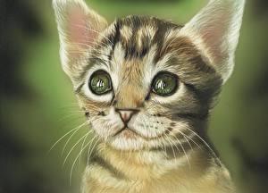 Обои Кошки Рисованные Глаза Взгляд Морда Усы Вибриссы Животные фото