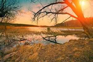 Обои Рассветы и закаты Осень Реки Ветки Деревья Природа фото