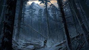 Фотография Rise of the Tomb Raider Лес Гора Зимние Лара Крофт Дерева Снега Природа