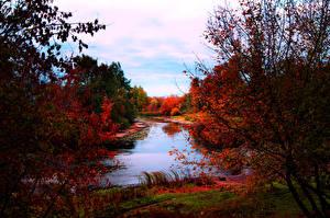 Обои Времена года Осень Реки Деревья Природа фото