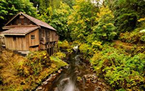 Картинка Штаты Лес Речка Вашингтон Водяная мельница Etna