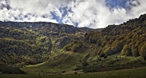 Фото Испания Горы Леса Облако Asturias Природа