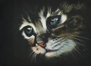 Обои Кошки Рисованные Глаза Морда Усы Вибриссы Взгляд Животные фото