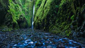Обои США Водопады Камни Мох Скала Ручей Oregon Природа фото