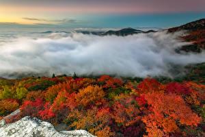 Обои США Горы Осень Леса Пейзаж Туман North Carolina Природа фото