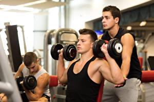 Обои Мужчины Фитнес Бодибилдинг Майка Гантели Парни Тренер Тренировка