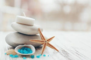 Фотография Камни Морские звезды Спа Соль