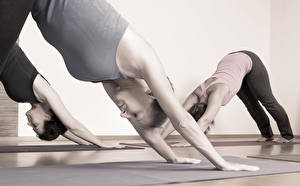 Обои Фитнес Йога Растяжка упражнение class position Спорт Девушки