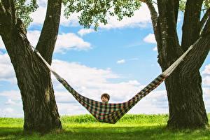 Обои Гамаке Ствол дерева Мальчишки Дерево Дети
