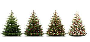 Фотографии Праздники Рождество Белый фон Елка Шар Электрическая гирлянда Ель