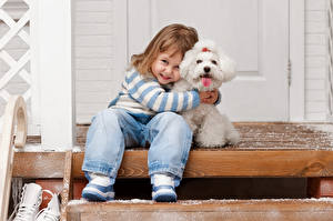 Фотографии Собаки Девочки Джинсы Болоньез Улыбка Сидящие Лестницы Дети Животные