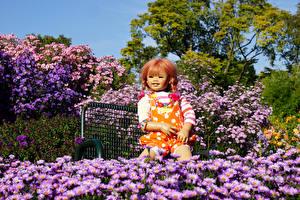 Обои Германия Парки Астры Кукла Девочки Grugapark Essen Природа