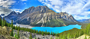 Картинка Канада Горы Озеро Леса Пейзаж Облачно Peyto lake Природа