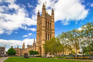 Обои Великобритания Лондоне Дворец Газоне Облако Дерево Westminster Palace