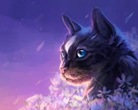 Обои Кошки Рисованные Морда Взгляд Животные фото