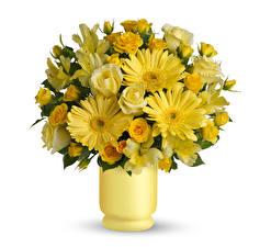Фотографии Букеты Розы Альстрёмерия Герберы Вазы Желтых Белом фоне Цветы