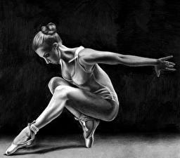 Фотография Рисованные Балета Черно белое Ноги молодые женщины