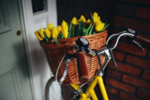 Фотография Тюльпаны Велосипедный руль Корзина Велосипед Желтых Цветы