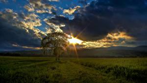 Фото Рассветы и закаты