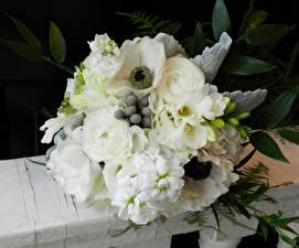 Обои Букеты Анемоны Фрезия Розы Белый Цветы фото